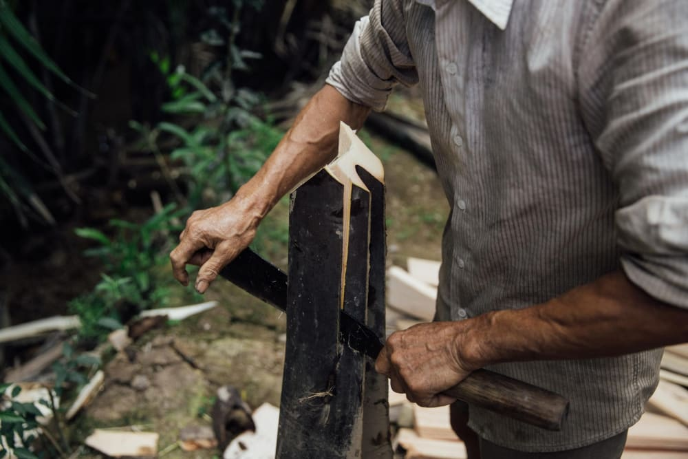 """Man cutting a thick palm stem into thin slices.<span class=""""sr-only""""> (opened in a new window/tab)</span>"""