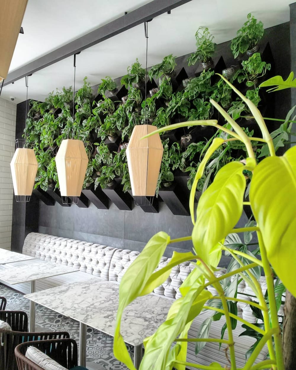 """Garden wall created on the back wall of a dining area.<span class=""""sr-only""""> (opened in a new window/tab)</span>"""