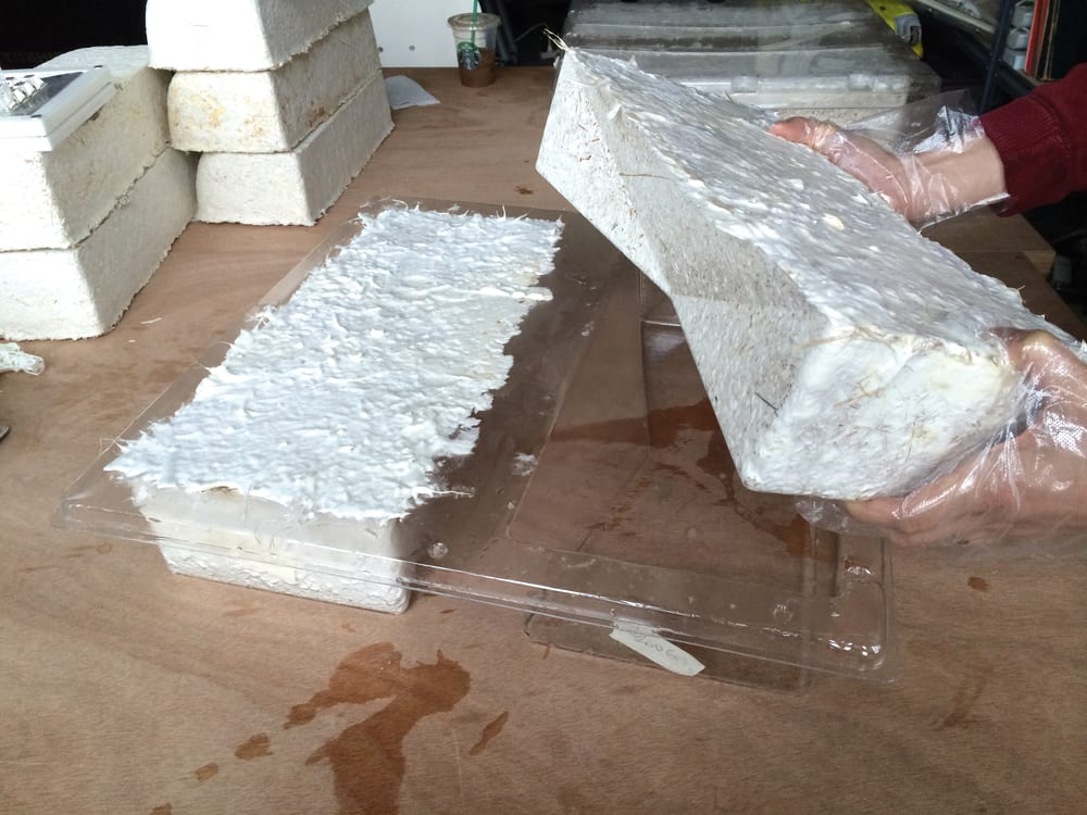 "Making of the mycelium bricks.<span class=""sr-only""> (opened in a new window/tab)</span>"