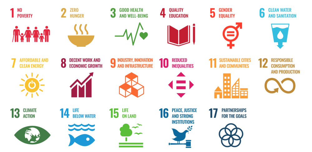 "Graphic of the 17 UN sustainable development goals.<span class=""sr-only""> (opened in a new window/tab)</span>"