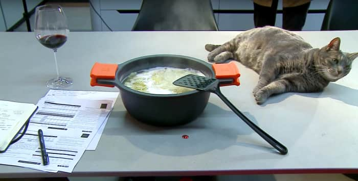 In an invisible kitchen with hidden induction, pans, papers and even a cat can sit on the same surface at the same time!