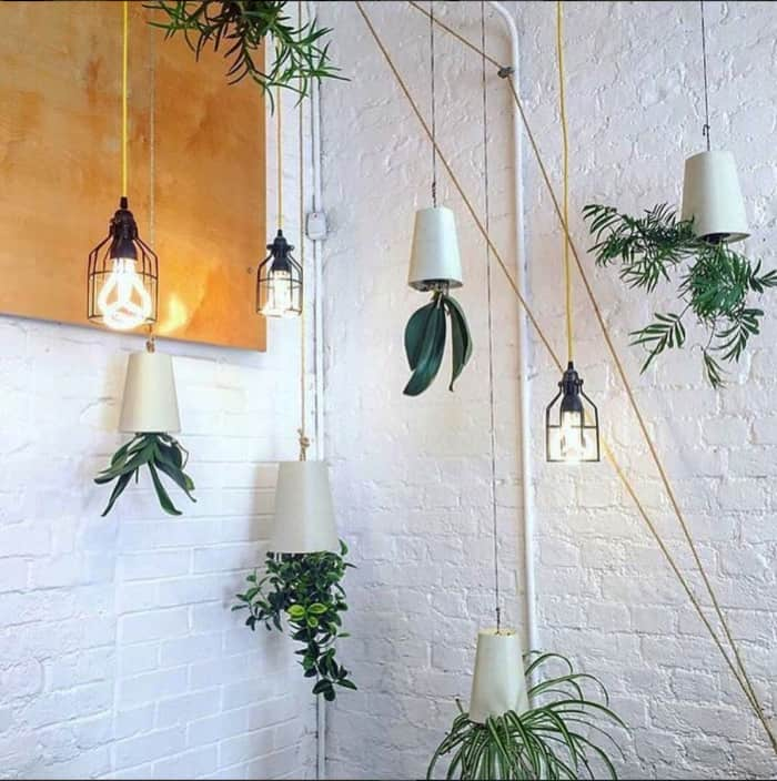 """Vases hanging upside down.<span class=""""sr-only""""> (opened in a new window/tab)</span>"""