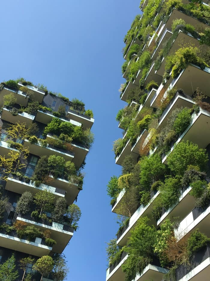 Vertical forest.