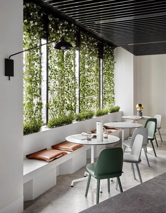 Garden wall design feature in a minimalist dining area, great example of biophilic design.