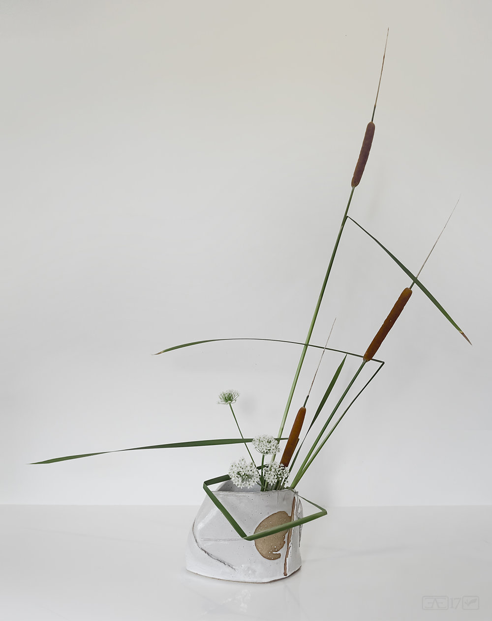 Ikebana arrangement making great use of negative space.