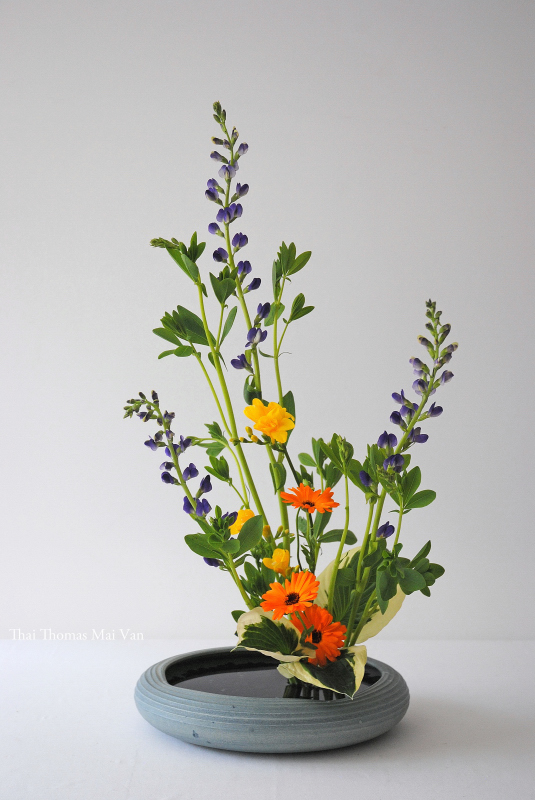 Summer Ikebana arrangement (Moribana).