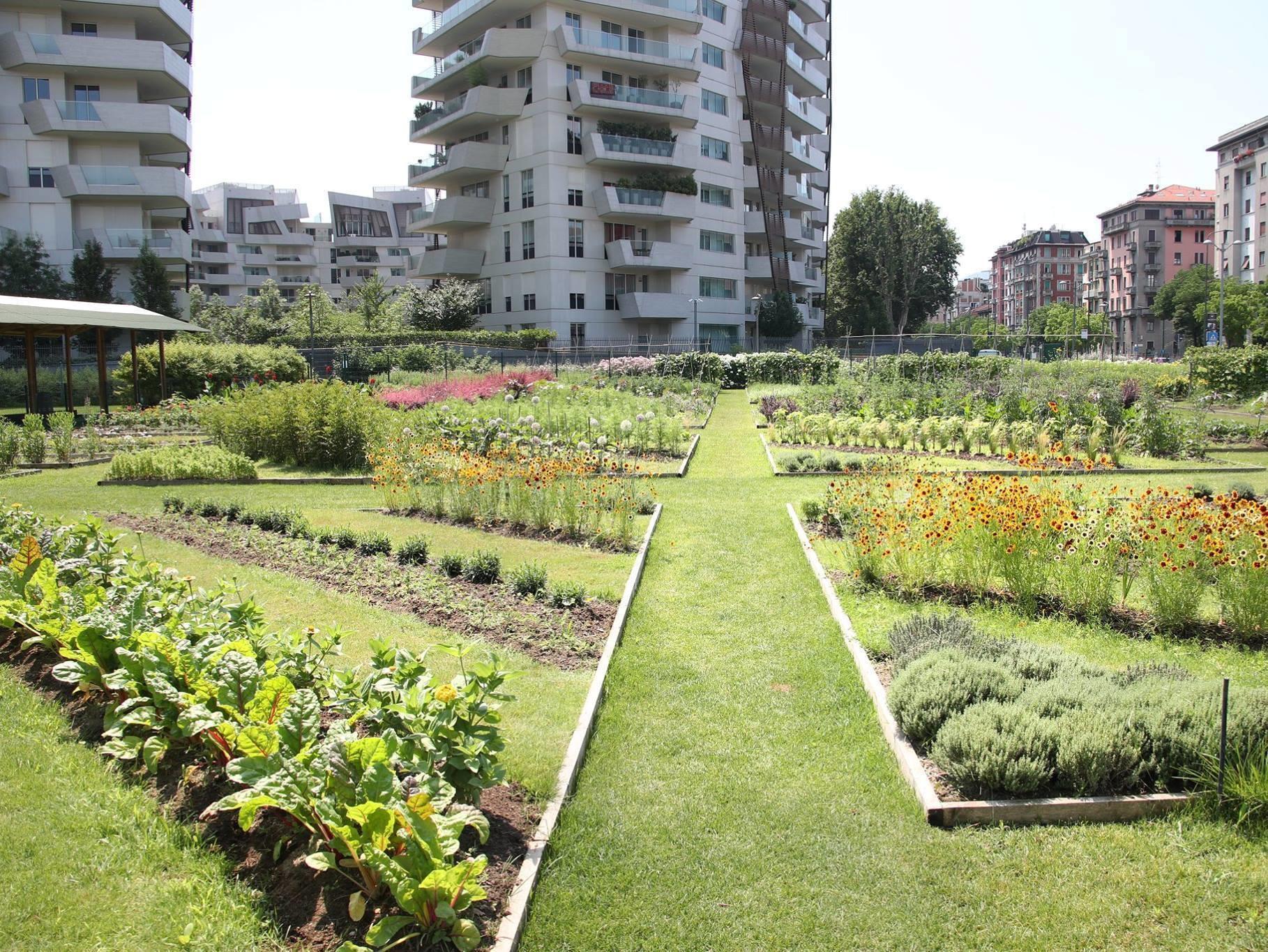 Garden in CityLife park.