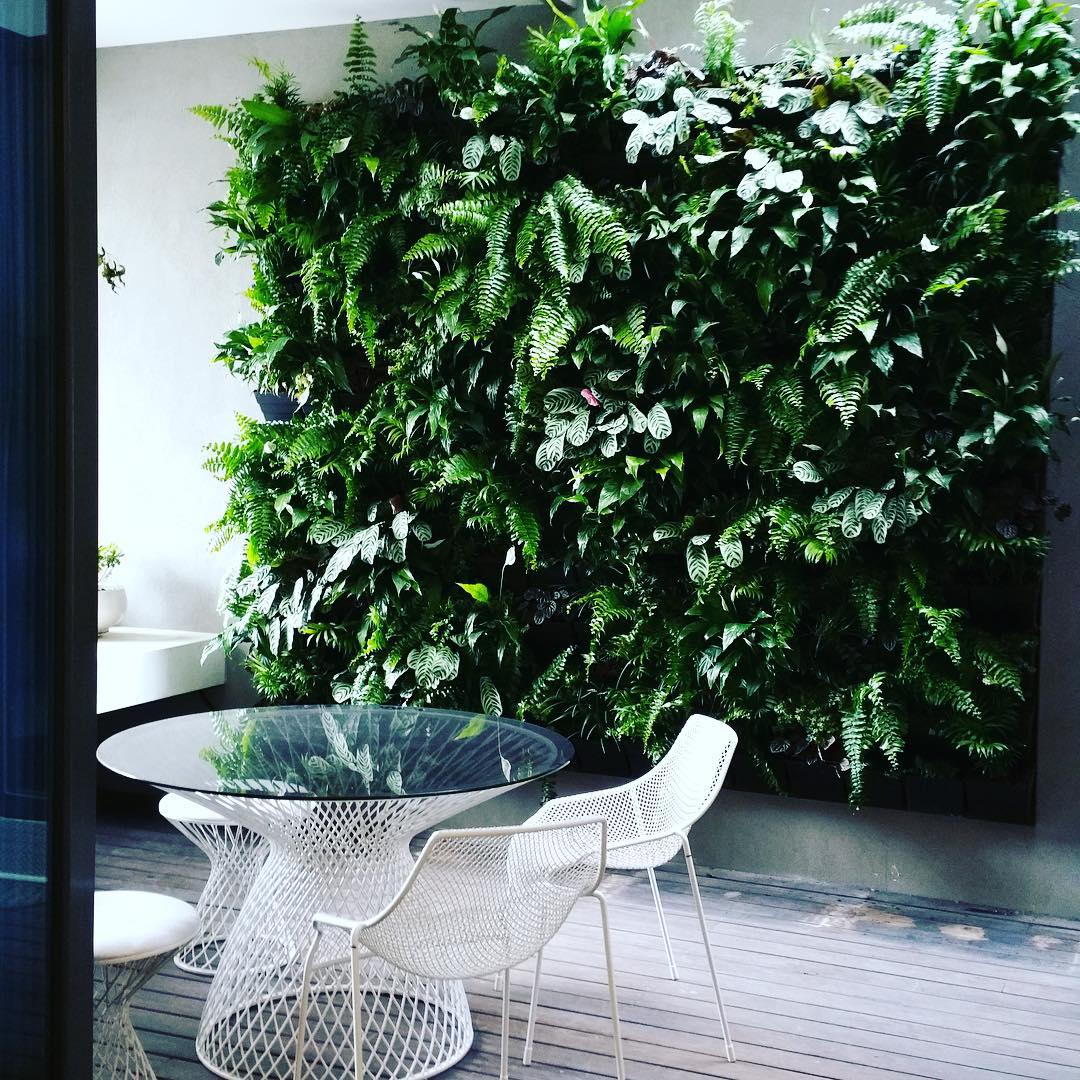 Chair in a veranda with a huge vertical garden as a backdrop.