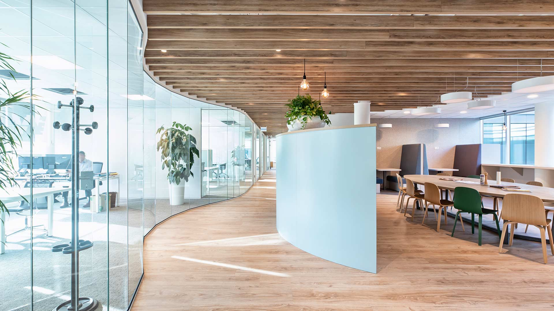 Open space office with curved walls.
