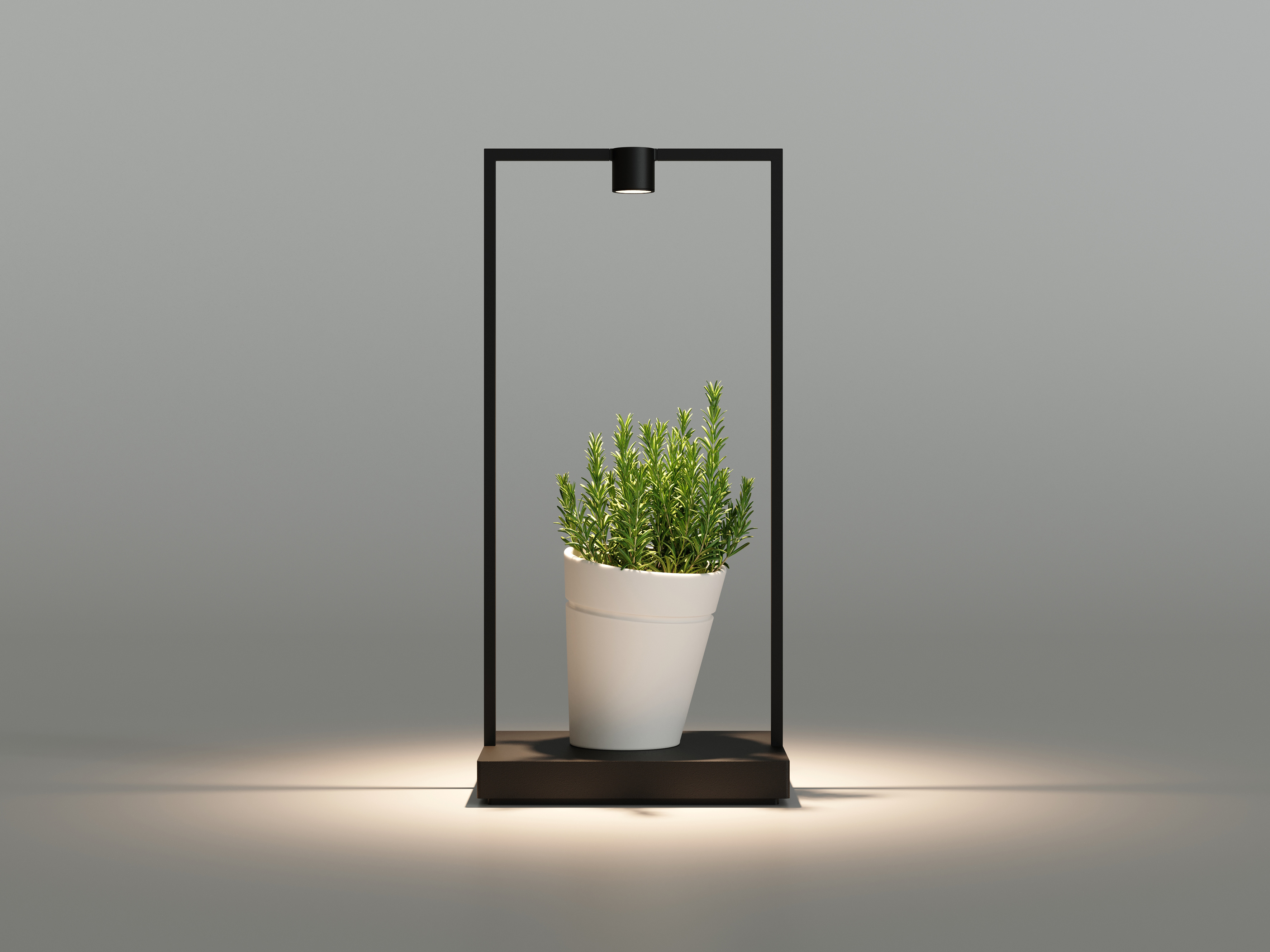Portable table lamp in the shape of a metal frame. The hollow in the middle is filled with a plant that gets hit by the light.