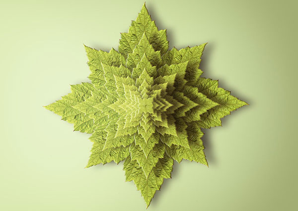 Fractal print reproducing a plant seen from above.