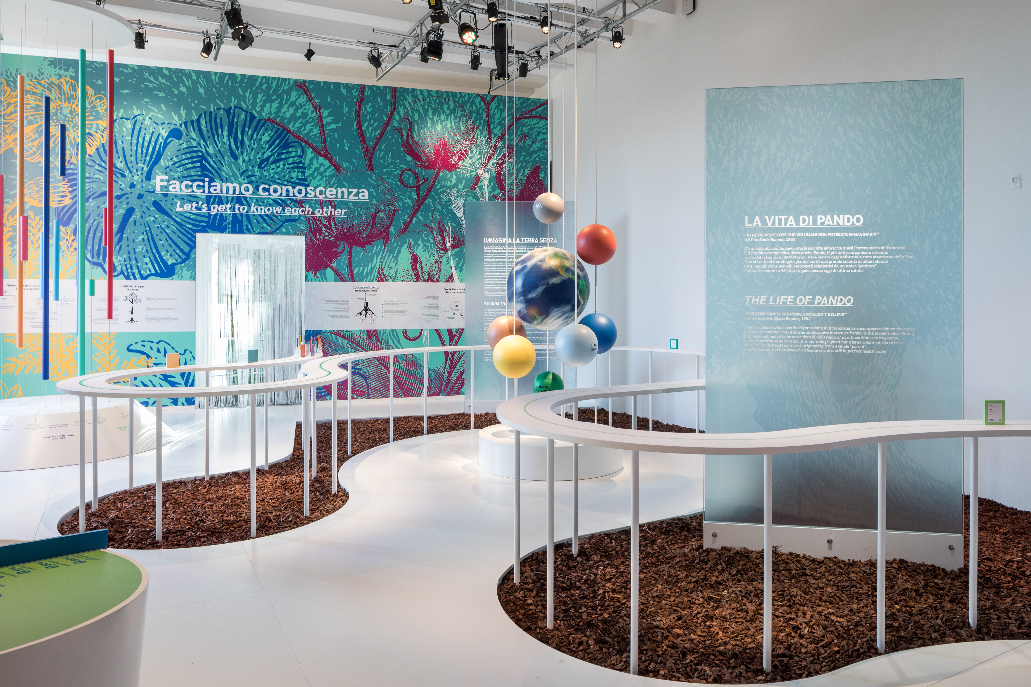 Photo of the first room of the Nation of Plants installation.