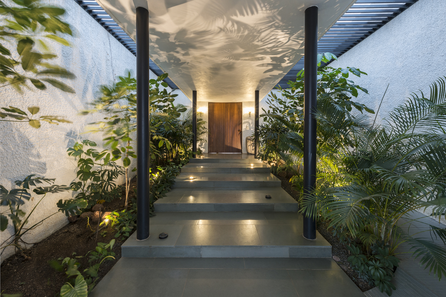 Home exterior at night. Light hits the plants whose reflection decorates the wall.