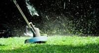 Koji trimer za travu kupiti - vodič za kupovinu