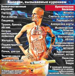 Какой вред наносит обществу курение