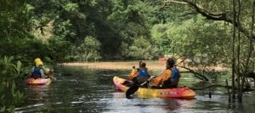 Kayak / Canoe 1 Hr Taster Sessions