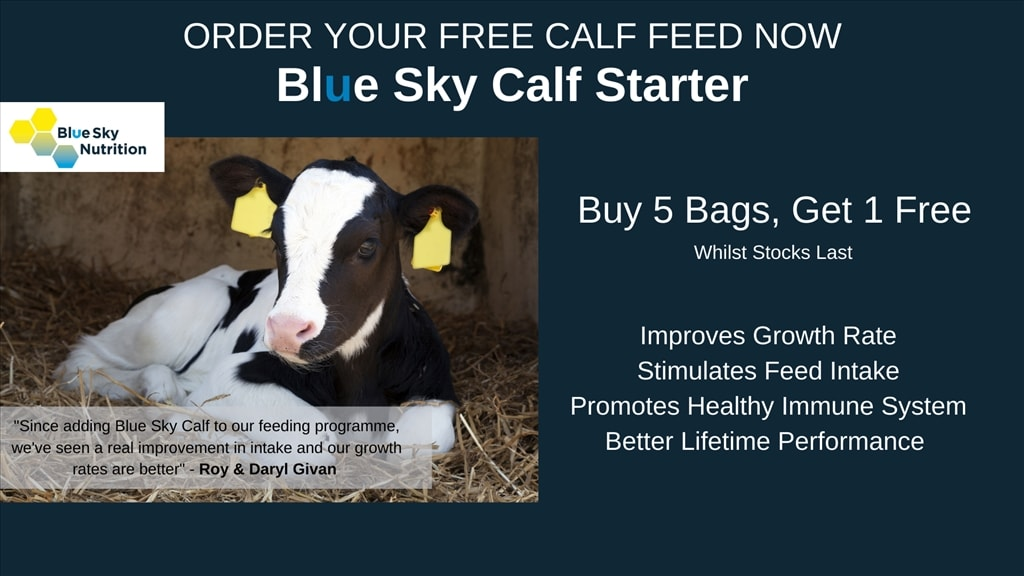 Get Your Free Bag of Calf Feed Now
