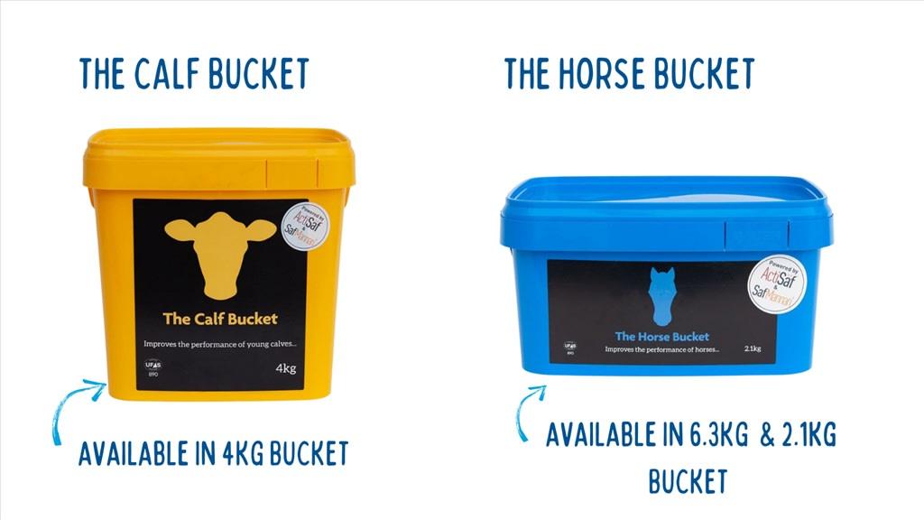 NEW - The Calf Bucket & The Horse Bucket