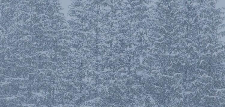 Vermont Weather