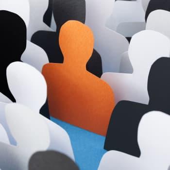 Libertés fondamentales, égalité, harcèlement et discrimination