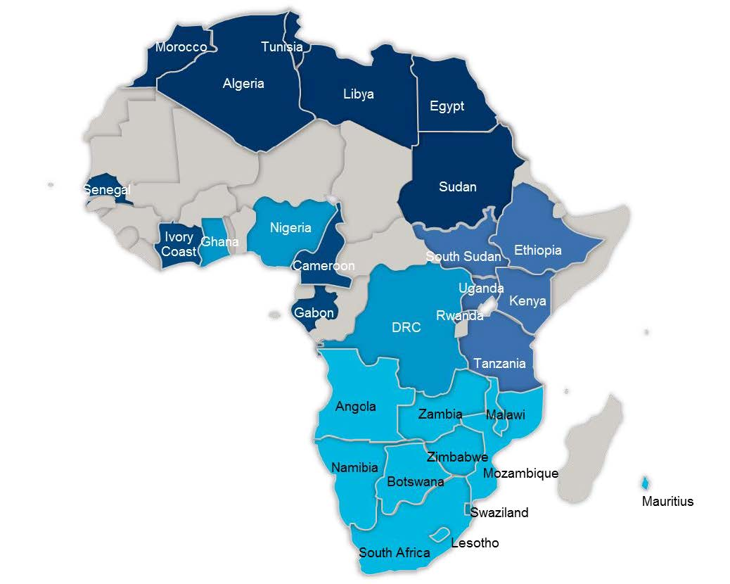 African Economics Quarterly Report