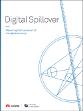 Digital Spillover