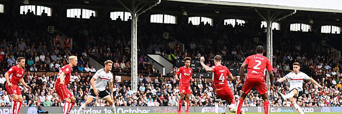 Fulham FC vs Newcastle United