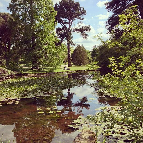 Reasons to visit Cambridge - Cambridge University Botanic Gardens