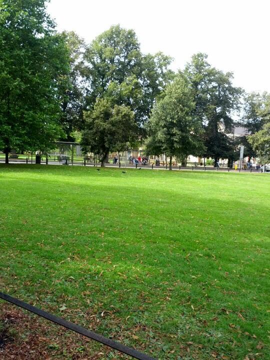 Reasons to visit Cambridge - Christ's Pieces