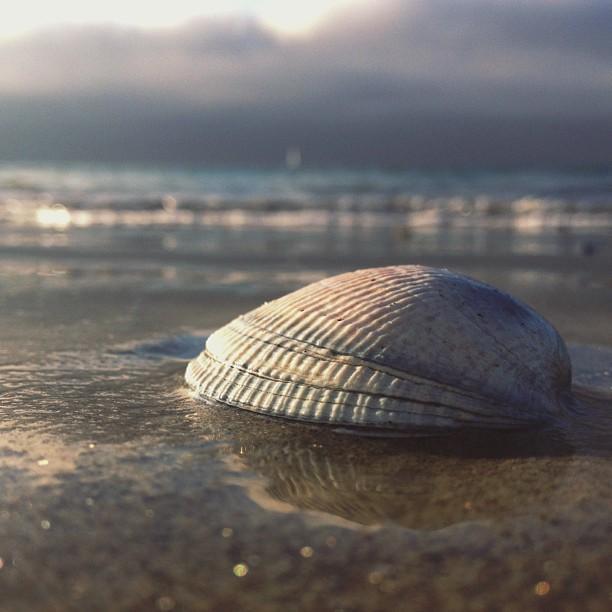 Reasons to visit Monterey - Monterey Municipal Beach