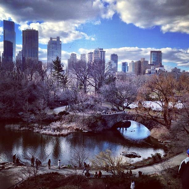 Reasons to visit New York - Central Park Tours