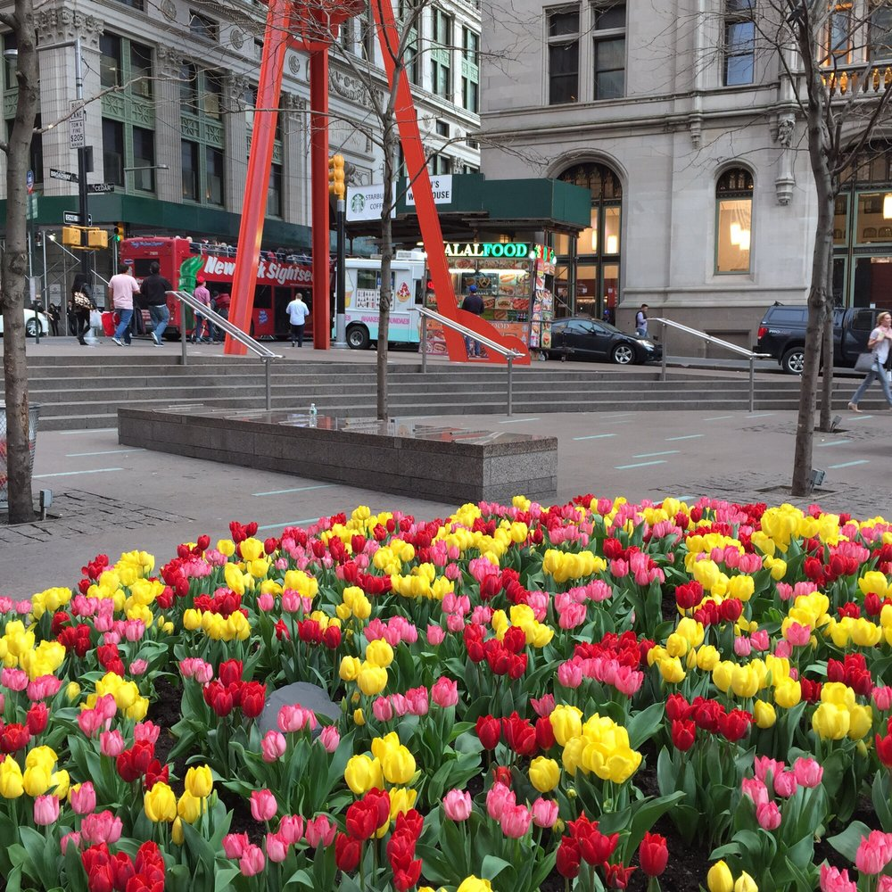 Reasons to visit New York - Zuccotti Park