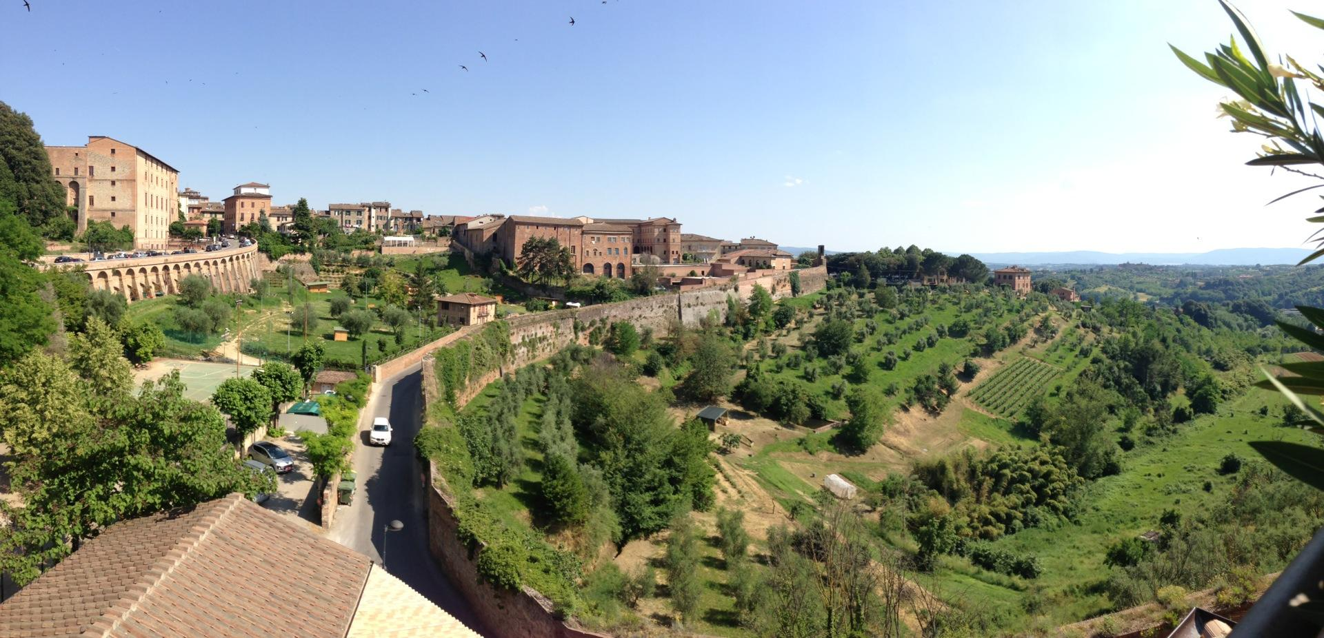 Reasons to eat out in Siena - Hotel Athena Siena