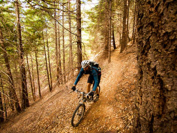 Reasons to Mountain Bike in the USA - Paradise Royale Loop - Northern California