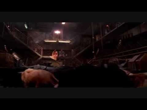 Reasons we still love Firefly and aren't over it's cancellation - Cows on a spacehip