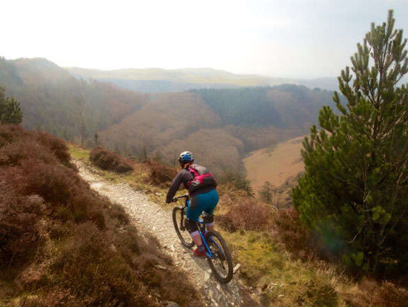to Mountain Bike (MTB) Wales