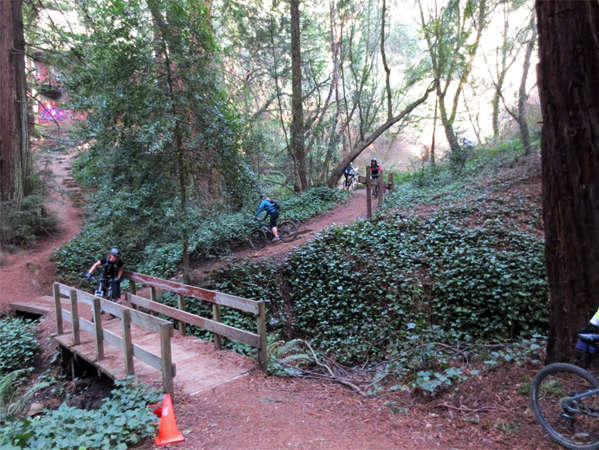 Reasons to Mountain Bike in the USA - Joaquin Miller Park, Oakland CA