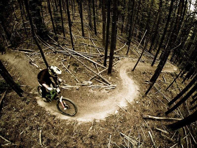 Reasons To Mountain Bike In The Usa