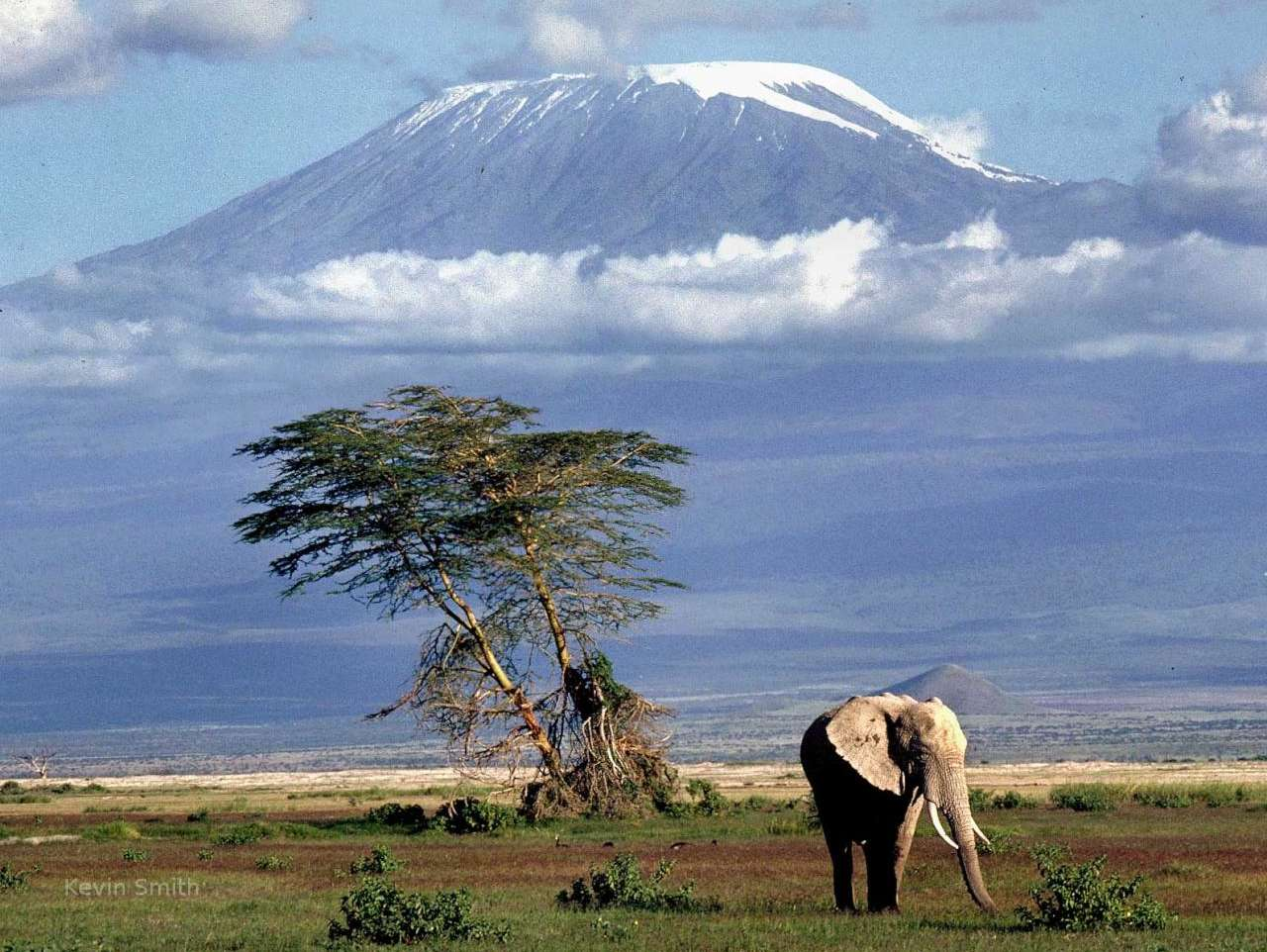 to visit Tanzania