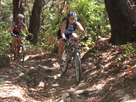 Reasons to Mountain Bike in the USA - Forest of Nisene Marks/Sand Point Overlook – Santa Cruz
