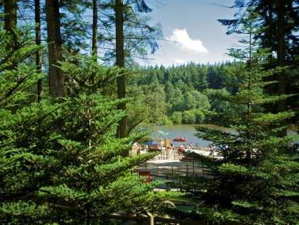 Reasons to wend your way in Wiltshire, England - Centre Parcs Longleat Forest