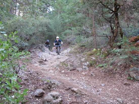 Reasons to Mountain Bike in the USA - Downieville Downhill – Downieville, California
