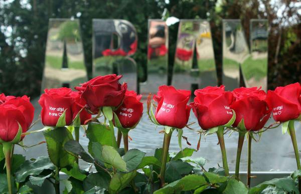 rode rozen op modern grafmonument