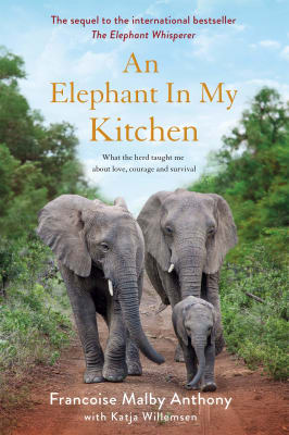 An Elephant in My Kitchen - Francoise Malby Anthony