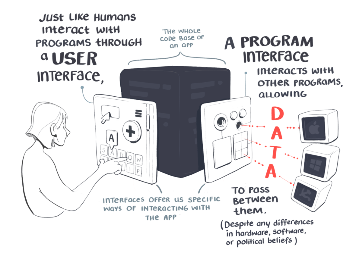 Just like humans interact with a programme through a user interface, a programme interface interacts with other programmes