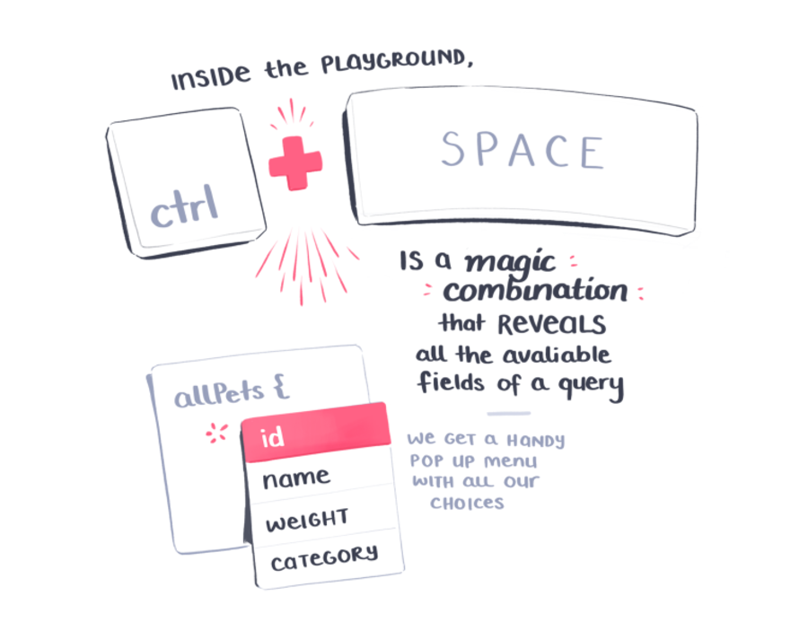 Inside the playground, ctrl + space is a magic combination that reveals all the available fields of a query