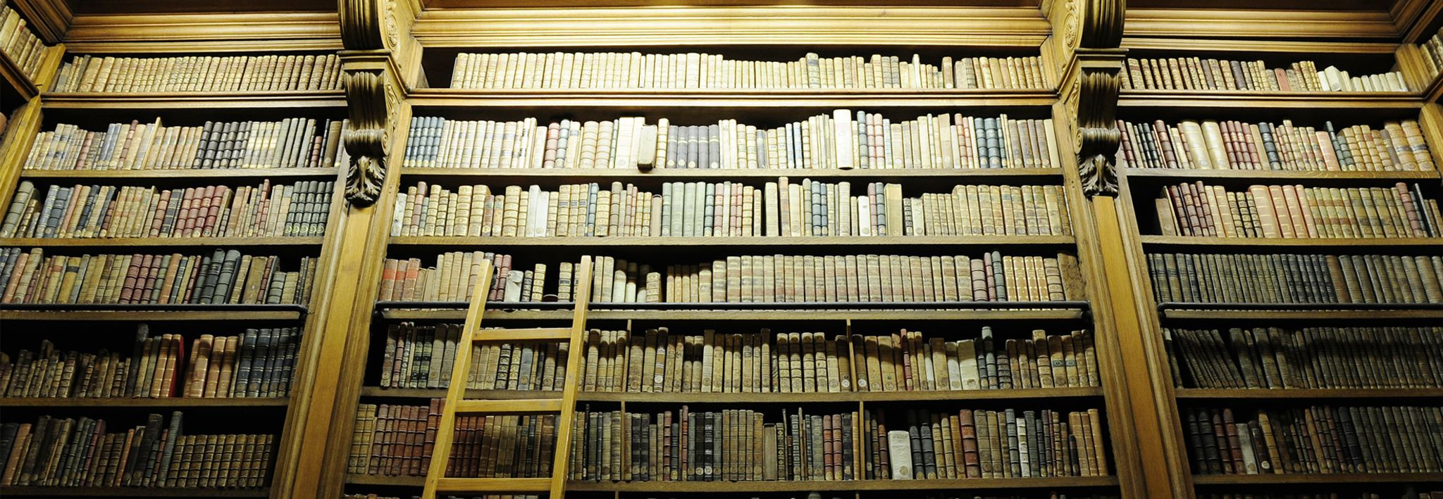 A collection of criminal justice books are displayed in a library.