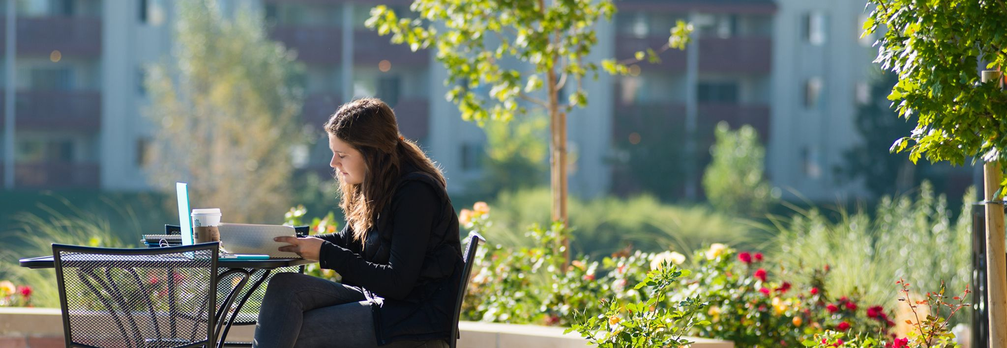 Student studying outside of Leprino on a nice sunny day.