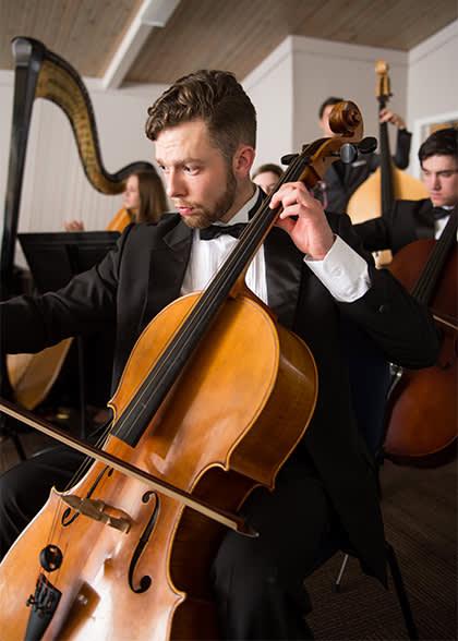 performer-in-the-chamber-strings-ensemble
