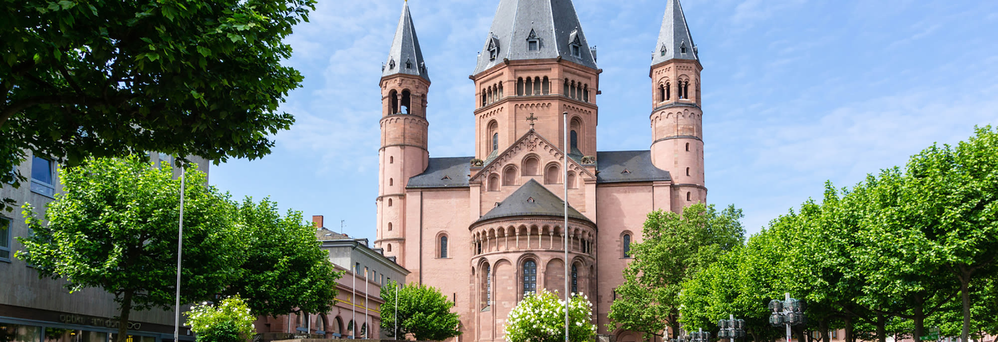 mainz cathedral with trees